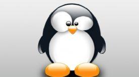 Google Pingüino proindex studio